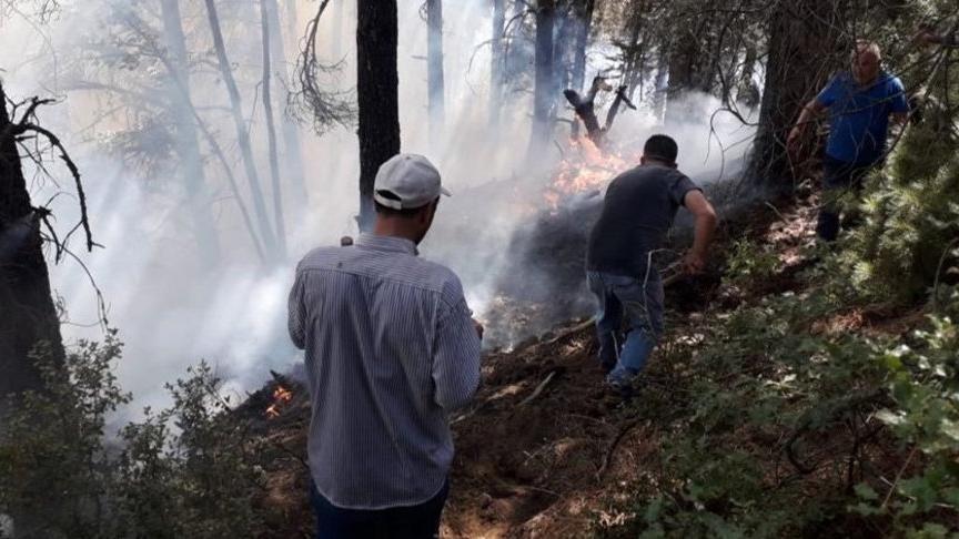 İzmir'de yangınlara sivil müdahale için 'Orman Gönüllüleri Ekibi' kuruluyor