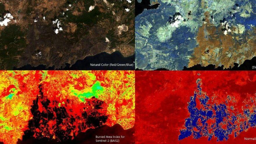 İTÜ: 85 bin futbol sahası büyüklüğünde orman yandı
