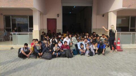 Meyve kasalarının arasından 85 düzensiz göçmen çıktı