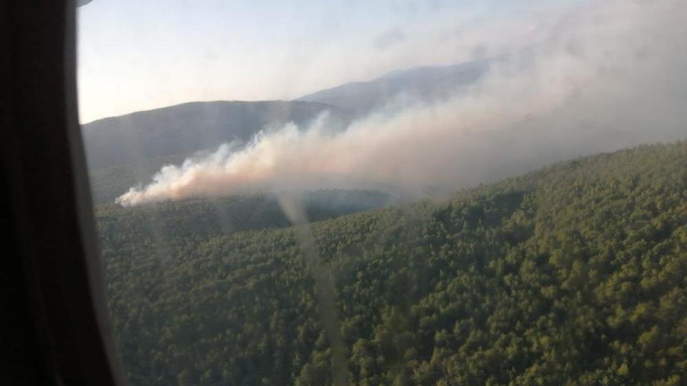 Çeşme'de yangın: Havadan ve karadan müdahale ediliyor