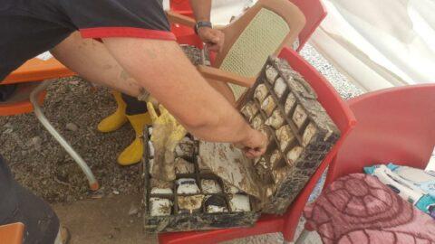 Bozkurt'ta enkazdan bir çanta dolusu ziynet çıktı