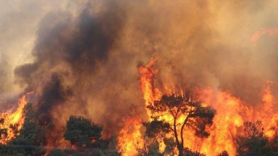 Çanakkale'de aynı bölgede 6'ncı orman yangını