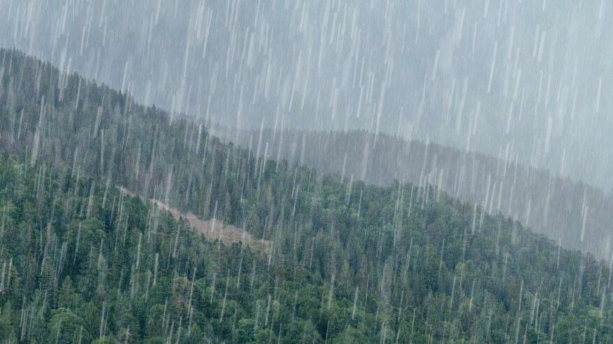 Meteoroloji'den Trabzon, Rize ve Artvin için aşırı yağış uyarısı