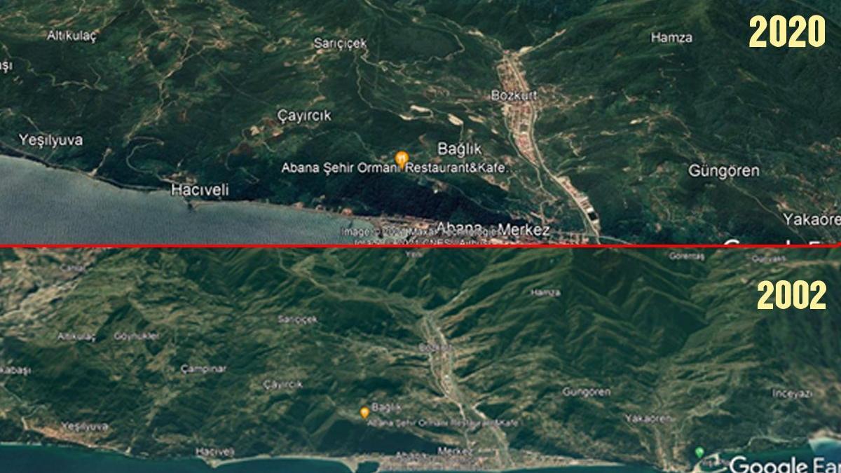 Uzman isim Bozkurt felaketini analiz etti