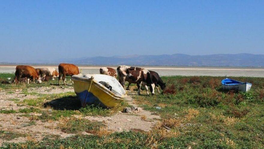 Marmara Gölü kurudu, zemininde derin yarıklar oluştu
