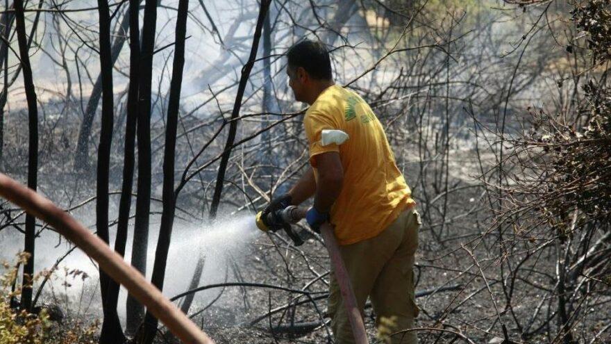 Orhangazi'de orman yangını büyümeden söndürüldü