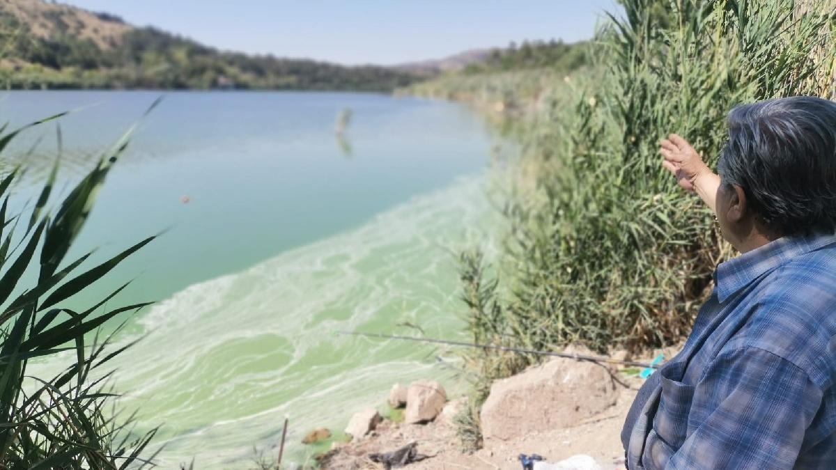 Eymir Gölü de kirlendi, müsilaj endişesi