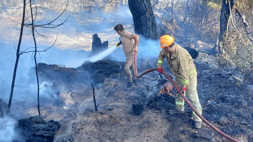 Antalya'da bahçede başlayıp, ormana sıçrayan yangın söndürüldü