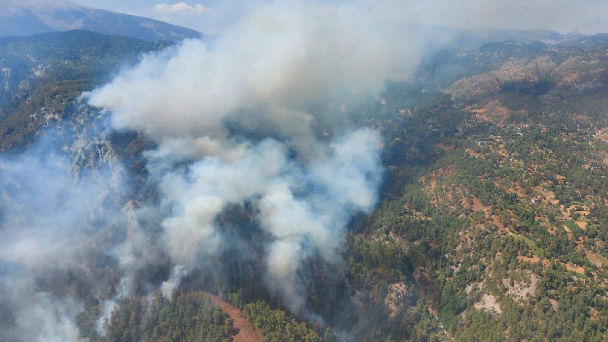 Köyceğiz'de yine orman yangını başladı