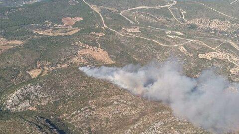 İzmir'de iki ayrı bölgede orman yangını