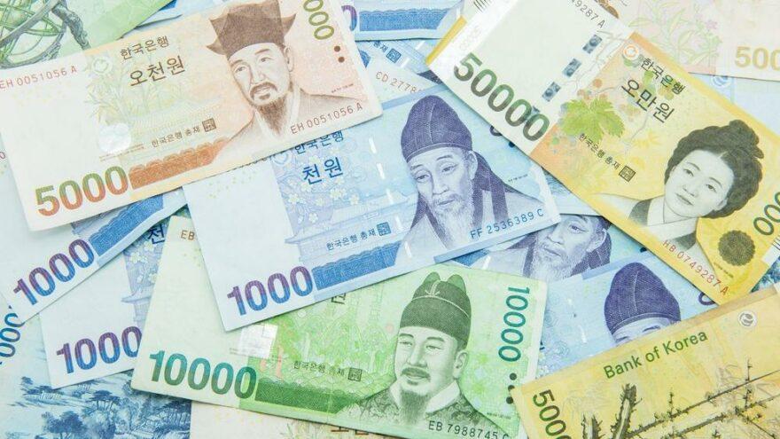 Güney Kore wonu TCMB'nin döviz listesine eklendi