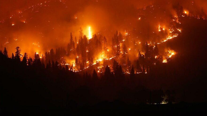 California tarihinin en büyük ikinci yangını: 705 bin dönümlük alan kül oldu