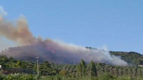 Bursa'da art arda orman yangınları