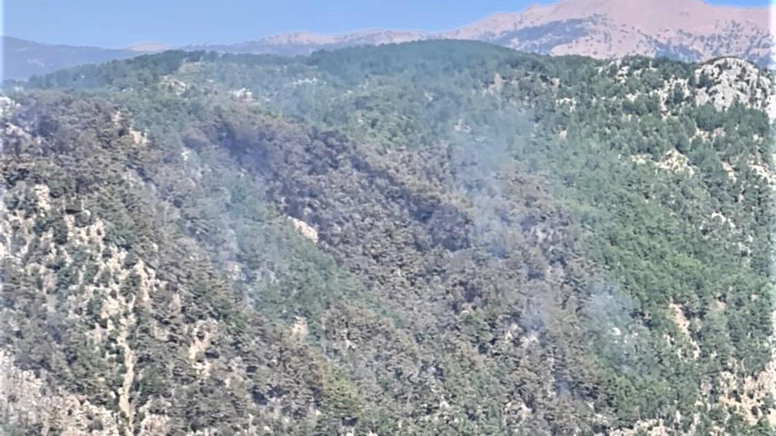 Köyceğiz orman yangını kontrol altına alındı