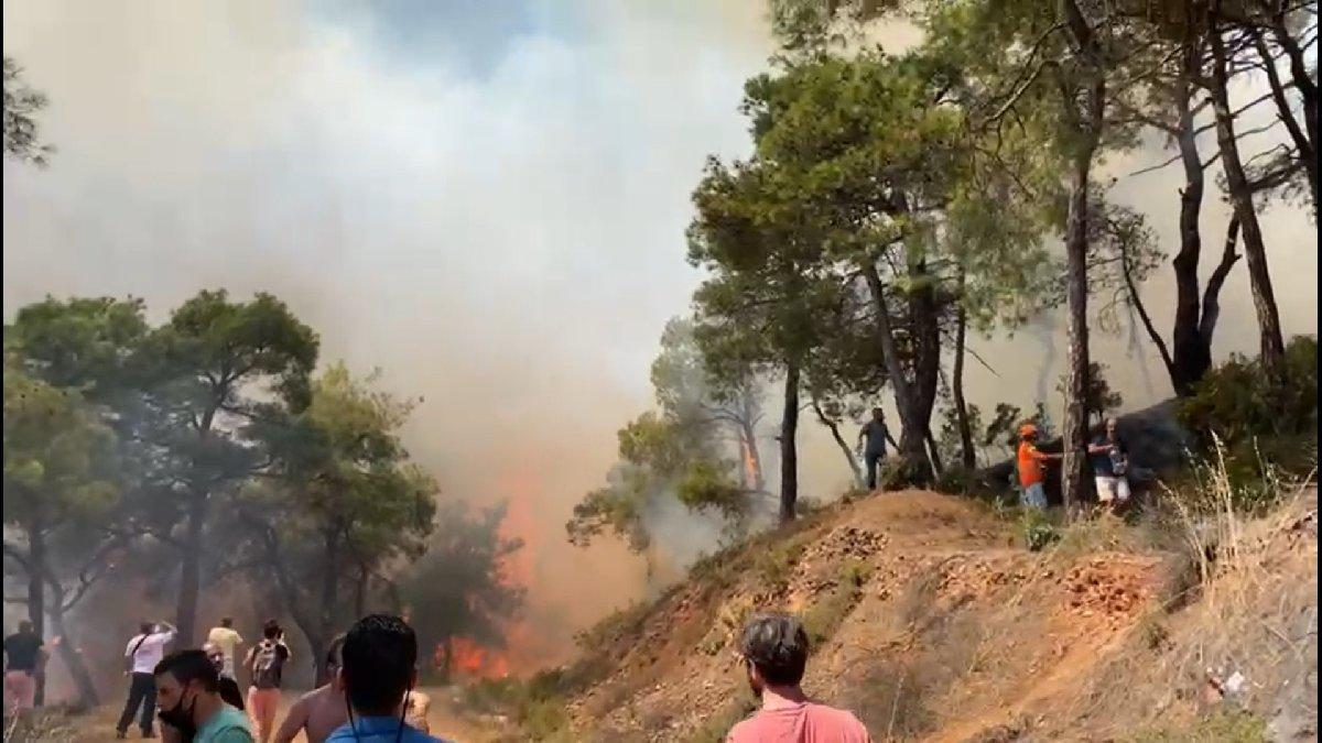 Vali: Heybeliada'daki orman yangını kontrol altına alındı