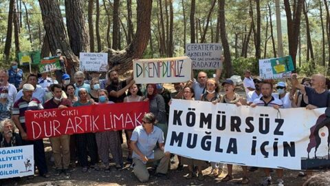 İkizköylülerden Bakan Pakdemirli'ye mektup: Akbelen ormanlarında kesim iznini iptal edin