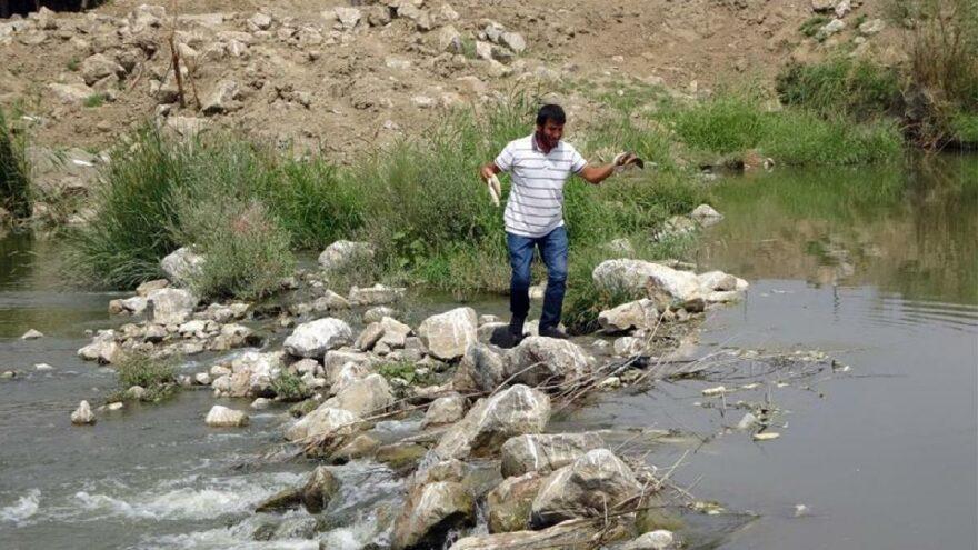 Karasu Nehri'nde neler oluyor?