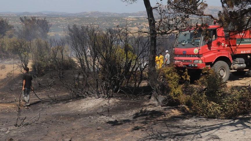 Çanakkale'de orman yangını çıktı