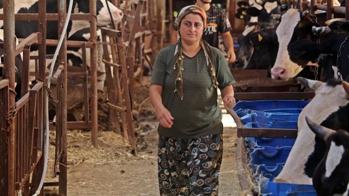 Hırsızlar, 4 bilezikle servet yapan kadının servetine dadandı
