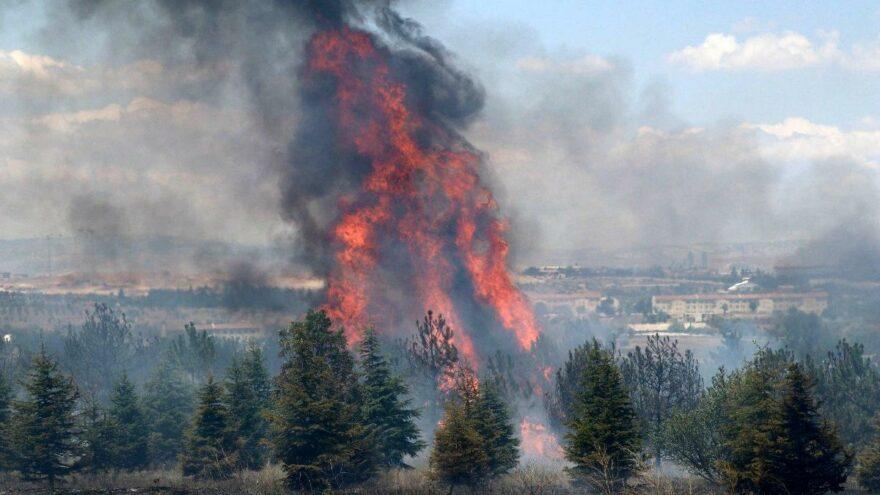 Atatürk Orman Çiftliği yangının şüphelisine en az 10 yıl hapis istemi