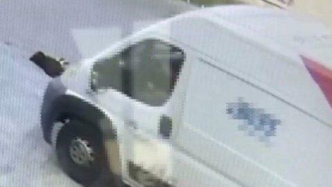 Minibüsle sokak köpeğini öldürdü, gözaltına alındı