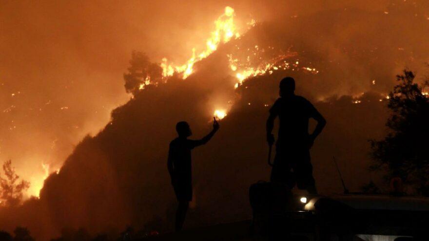 Bakan Pakdemirli: Yangından zarar gören üreticiye 9,5 milyon TL ödendi