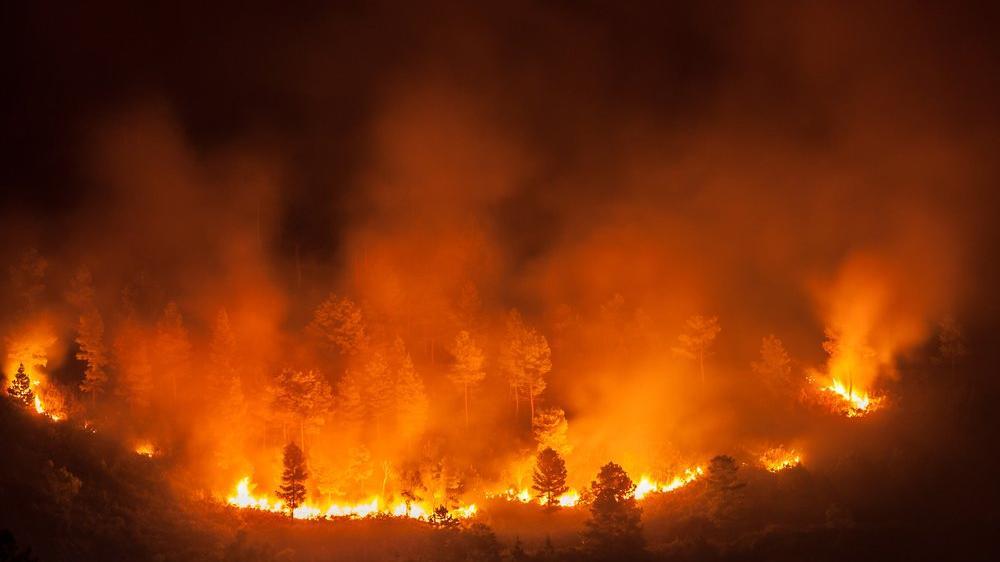 Küresel iklim krizi endişe yaratıyor: Avrupa en sıcak yılını yaşadı