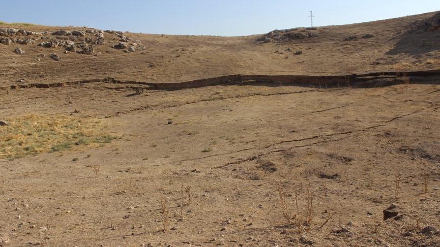 Konya'da telaşlandıran görüntü! Sayıları 600'e ulaşmıştı… 'İlk defa şahit oluyoruz'