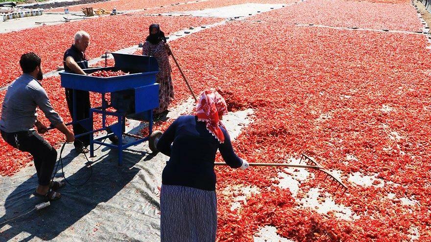 Şanlıurfa'da 'acı' zamanı: Her yer kırmızı