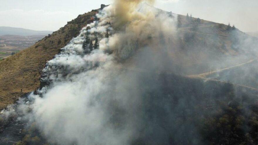 Afyonkarahisar'da orman yangını