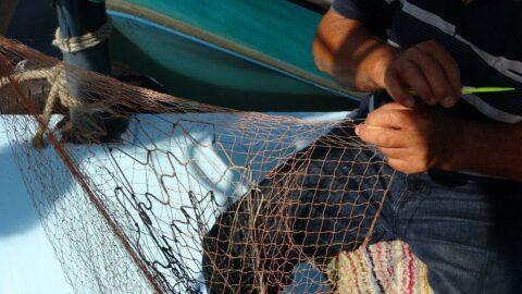 Denizlerde av sezonu başlıyor