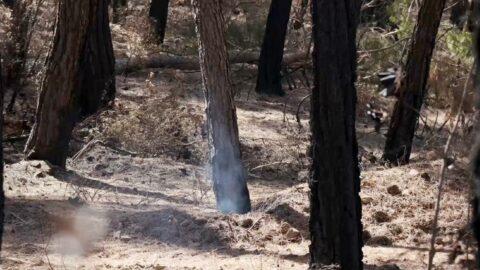 Yangının üzerinden 25 gün geçti, hâlâ duman tütüyor