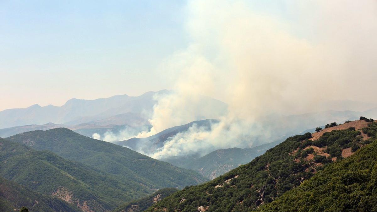 Munzur Vadisi Milli Parktaki yangına müdahale sürüyor