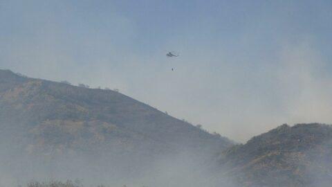 Bingöl'deki yangına havadan ve karadan müdahale sürüyor