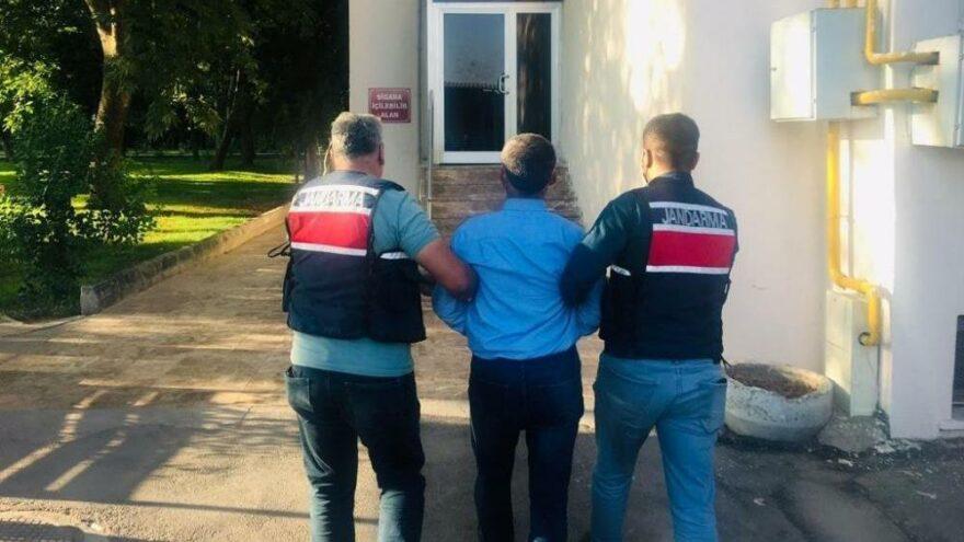 Yaralı teröristi tedavi eden şahıs tutuklandı