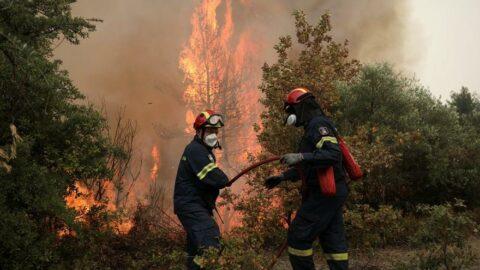 Komşuda orman yangınları sonrasında kabine değişti