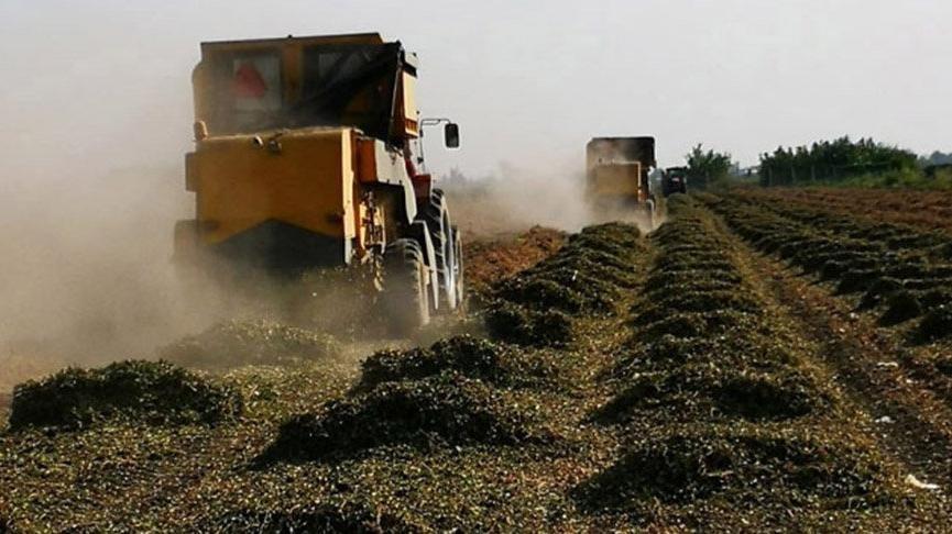 Kuraklık desteği açıklandı: 30 TL, çiftçiler tepkili