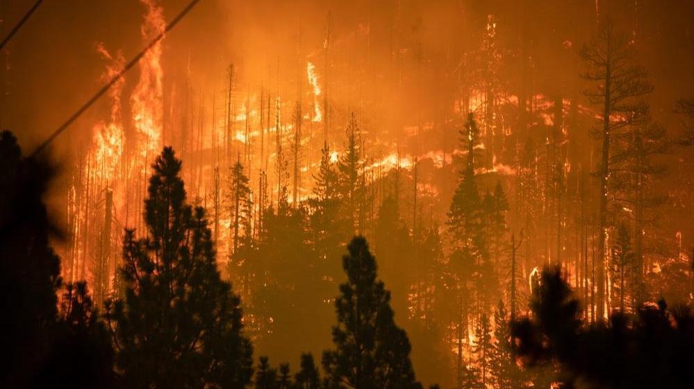 Caldor yangını 34 binden fazla yapıyı tehdit ediyor