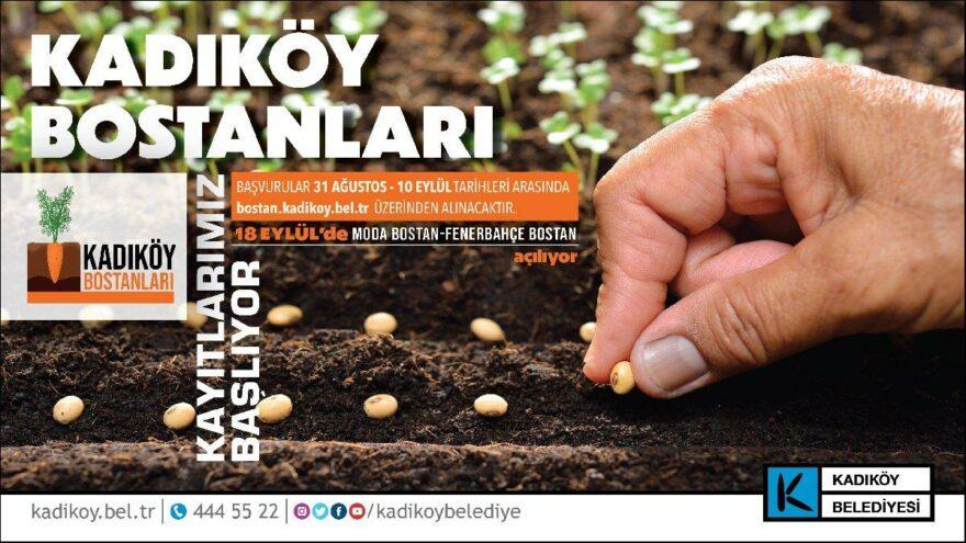 İstanbul'un göbeğinde ekolojik tarım: Kadıköy bostanları