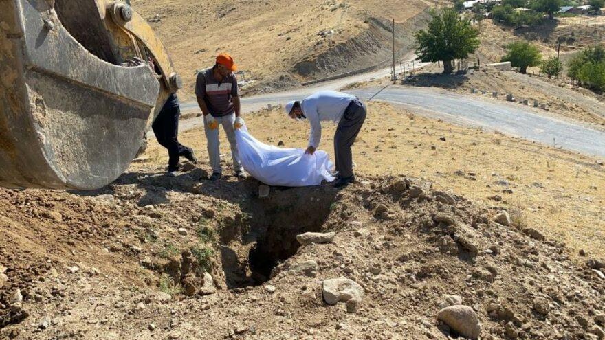 Elazığ'da etrafa saçılan kemikler yeniden defnedildi