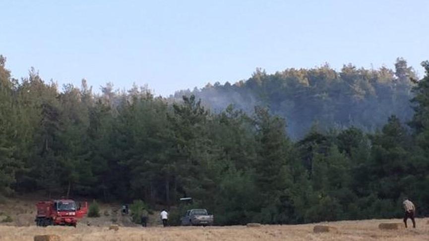 Balıkesir'de 2 ilçede orman yangını