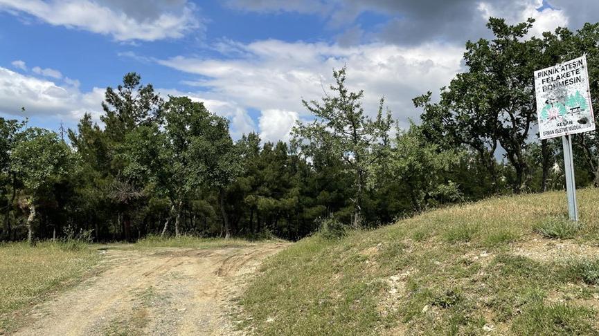Edirne'de ormanlara giriş yasağı uzatıldı