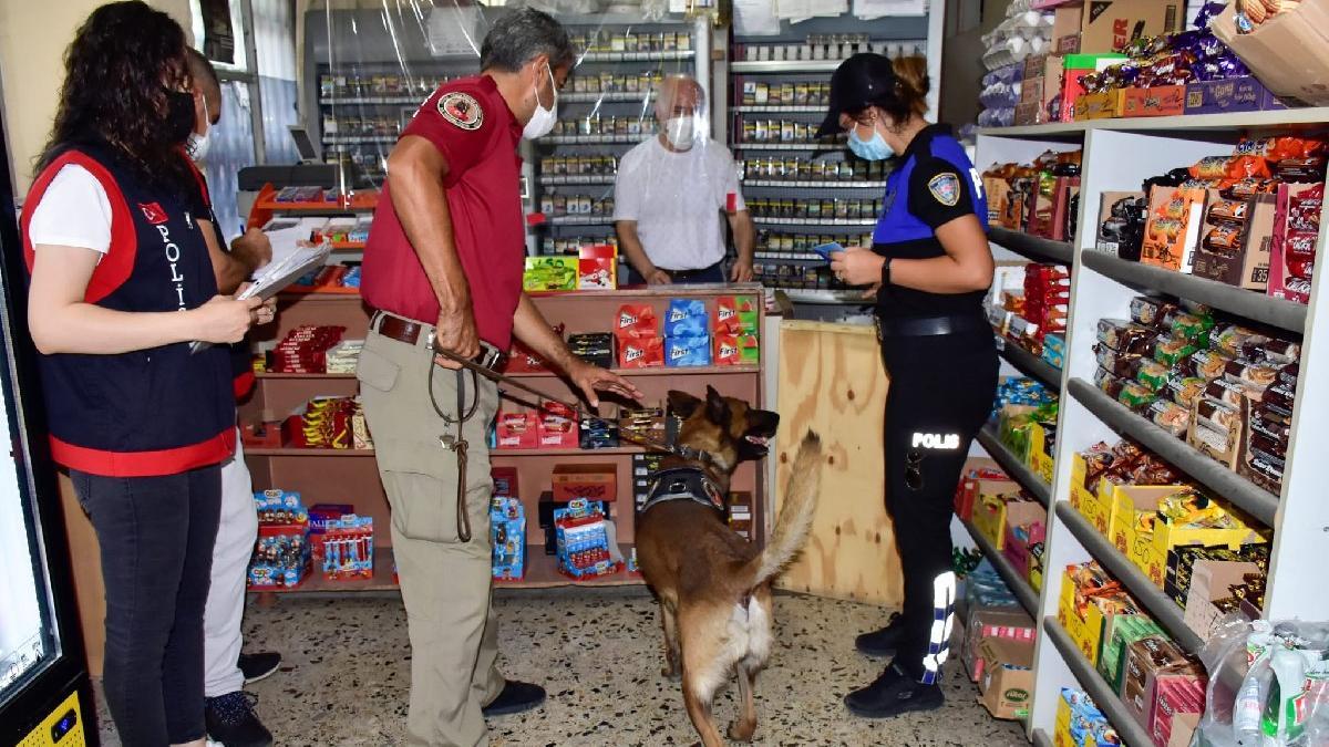 Okul çevresindeki iş yerlerini narkotik köpeklerle aradılar