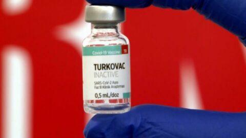 TURKOVAC'tan iyi haber; aşılanan 36 kişide yan etki görülmedi