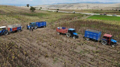 TZOB: Ayçiçek yağı lüks tüketim ürününe dönüşebilir