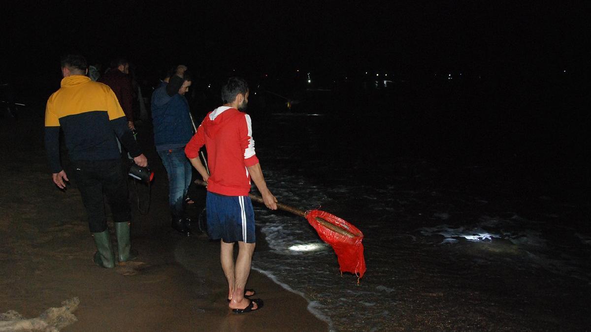Haberlerde görüp sahile akın ettiler! Büyük hayal kırıklığı yaşadılar