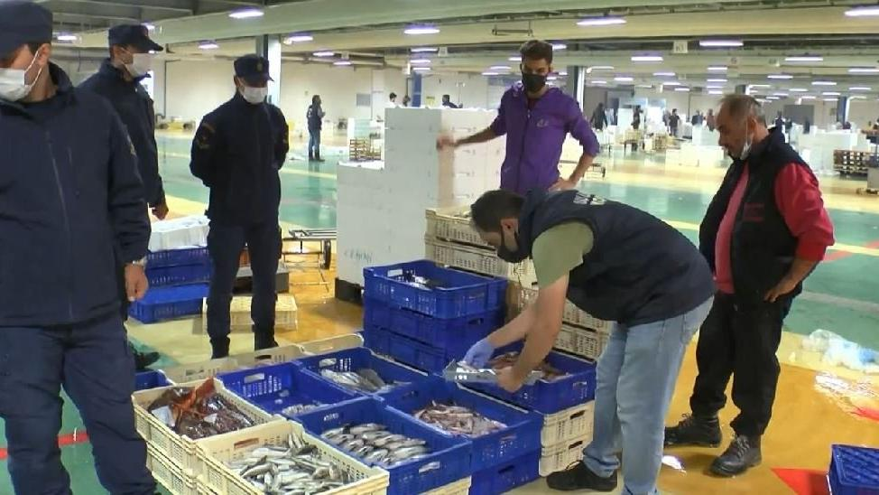 Balık haline boy baskını: 8 ton 795 kilogram balığa el konuldu