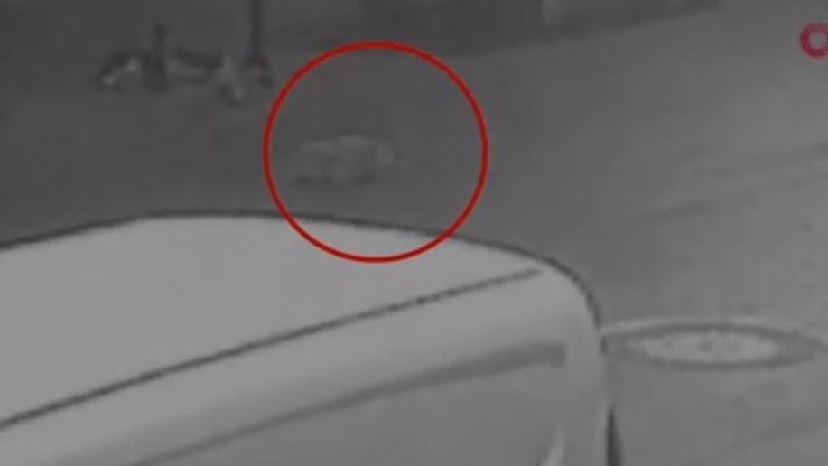 Köpeği ezip kaçtı, kameralara yakalandı