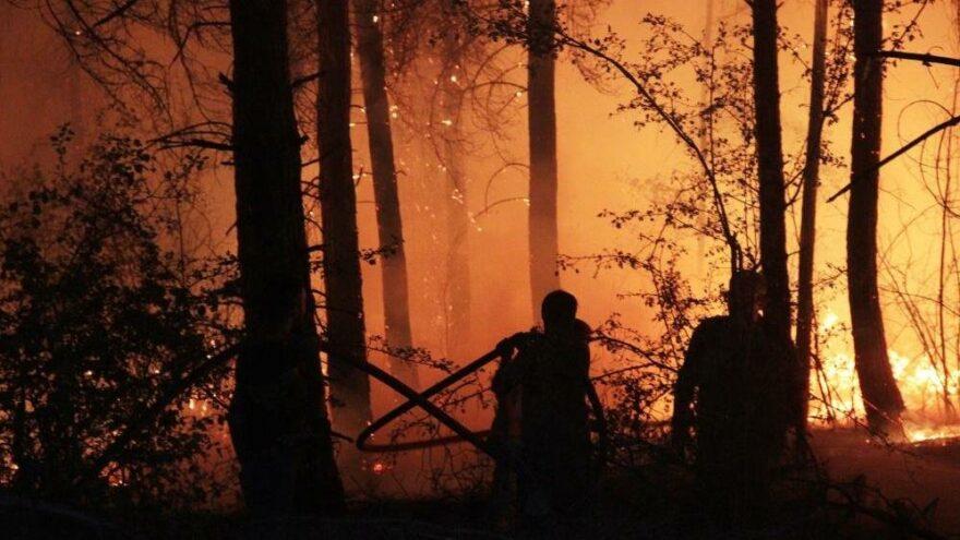 Muğla'da ormanlara giriş yasağı uzatıldı