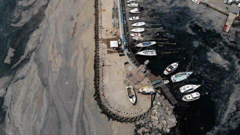 Marmara'da müsilaj incelemesi: Bu seneki manzarayı arayacağız